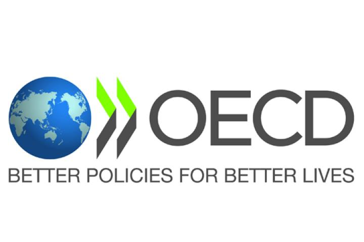 OECD Publishes Developments on the Safety of Manufactured Nanomaterials in Tour de Table
