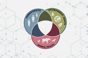 راهنمای ارزیابی ریسک استفاده از نانومواد در مواد خوراکی و زنجیره غذایی انسان ها و حیوانات